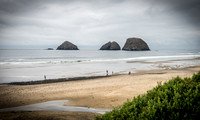 Northern California and Oregon Coast  (click for more)